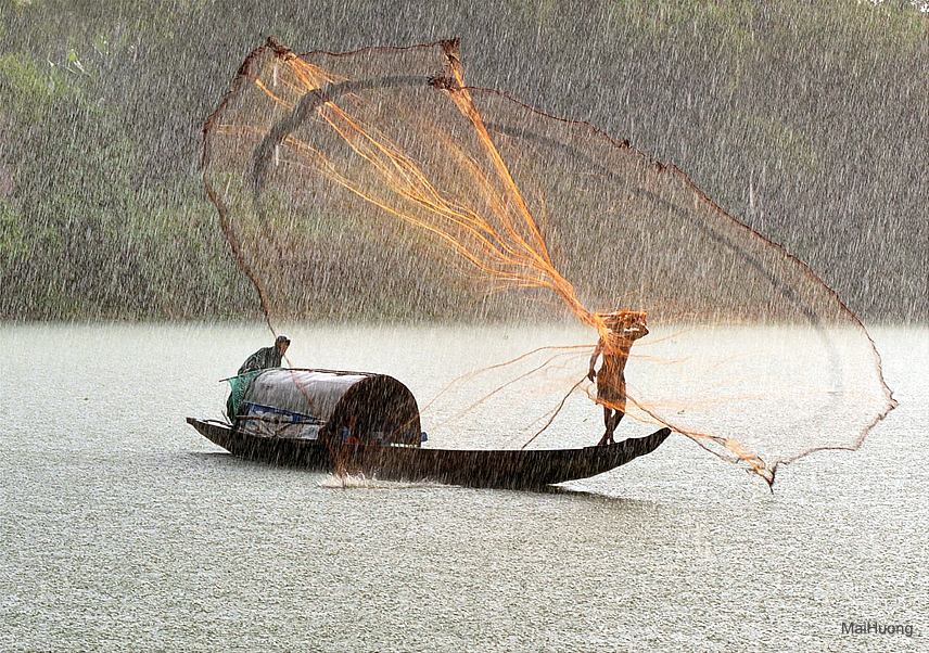 Fish-catch-under-rain.jpg